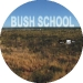 090_bush_school_disc_art