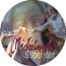 097_michelangelo_superstar_disk_art